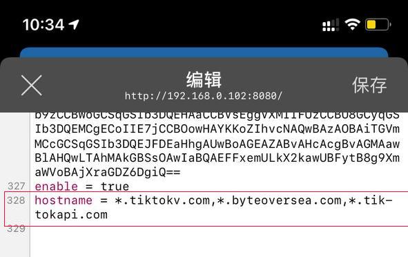 Shadowrocket-tiktok-newversion-hostname.jpg