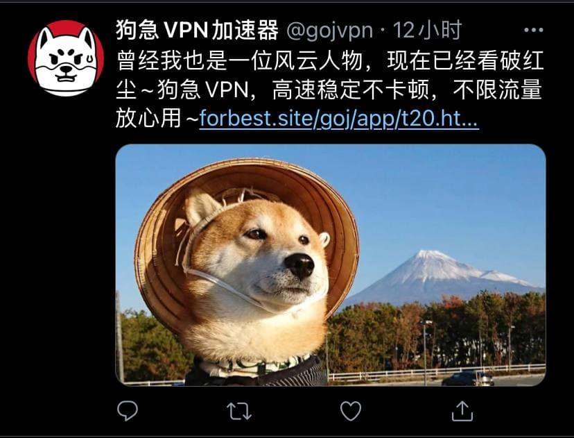 狗急VPN.jpg